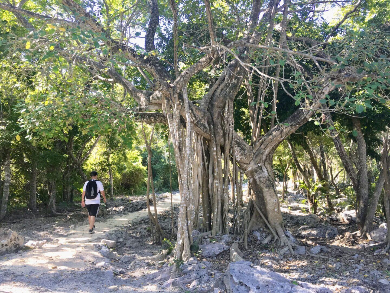 Visiting the Ancient Mayan Ruins of Xel-Ha
